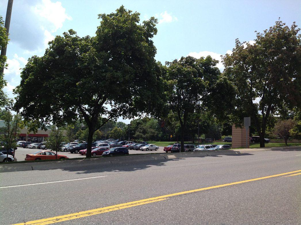 Shopping Center Renovation | Great Oaks Landscape